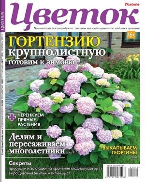 Цветок №17 сентябрь 2021